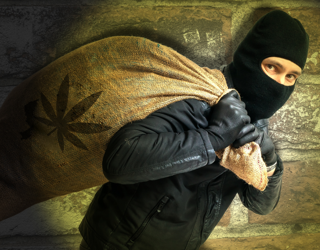 How to prevent theft in your cannabis dispensary