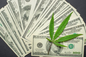 We want to help you maintain a successful cannabis business.